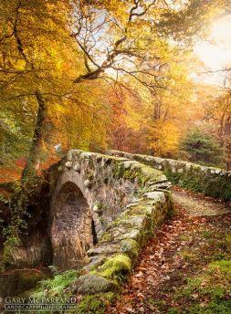 fairy bridge 02